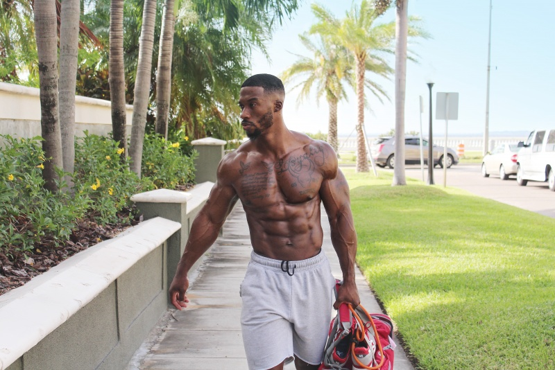 personal trainer in tampa fl
